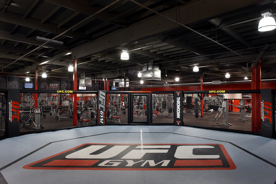 Boxing Training At UFC Gym Sydney