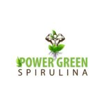 Boost Your Immune & Energy Level with Power Green Spirulina